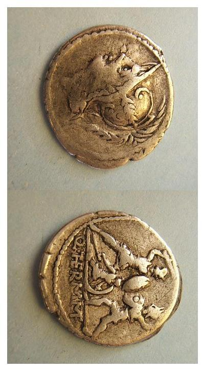 Qvintvs Minvcivs M.F. Thermvs   103 a.C.  ( Minucia 19)