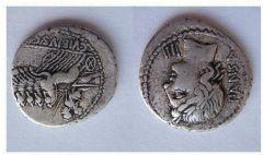 Caivs Vibivs C.F.Pansa 90 a.C.  (vibia 1)