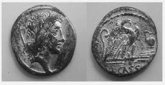 Q.Cassius Longinus 55 a.C. (Cassia 7)