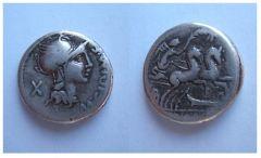Marcvs Cipivs Marci filiius 115-114 a.C.  (Cipia 1)