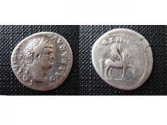 T.F. Domitianvs   (81-96 d.C.)